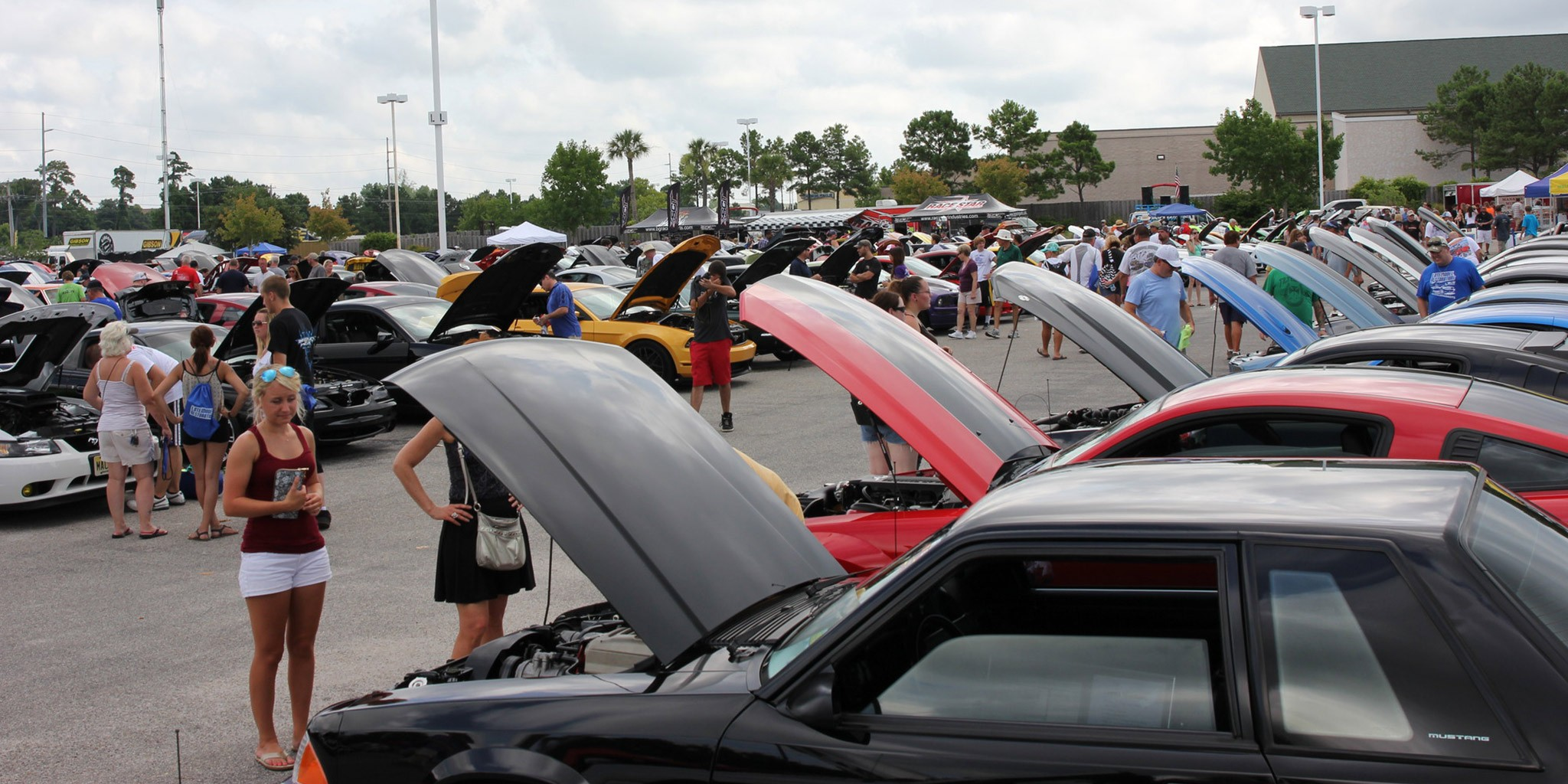 Header Image - 15th Annual Mustang Week